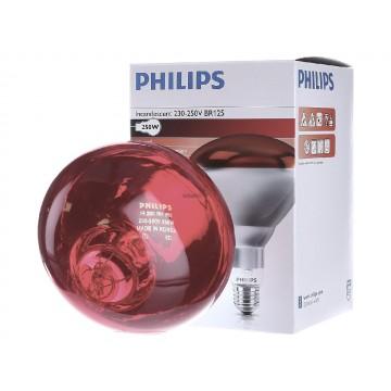 Lampada Philips...