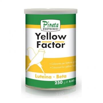 Pineta - Yellow Factor - 100Gr