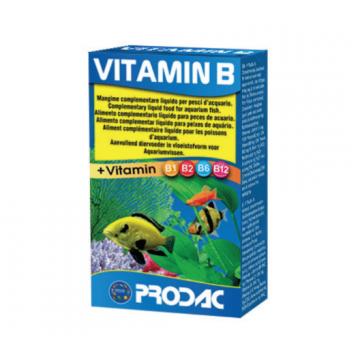 Vitamina B-Complexo...