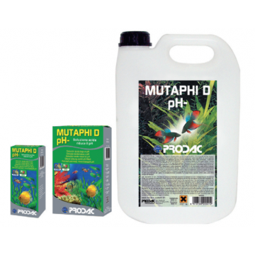 Muthaphi'D 100ml (para...