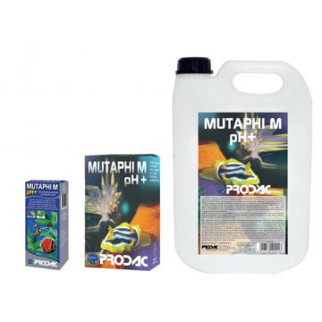Muthaphi'M 100ml (para...
