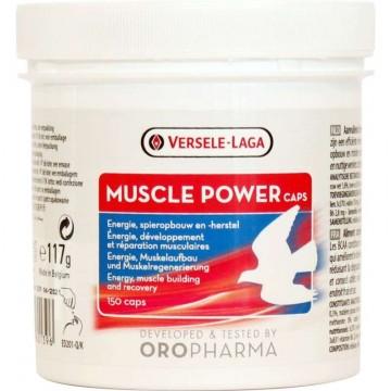 Versele-Laga Muscle Power...
