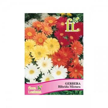 copy of Sementes couve flor...