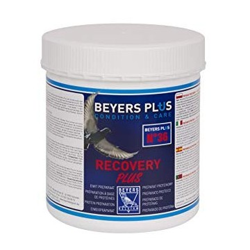 Recovery Plus 600gr - Beyers