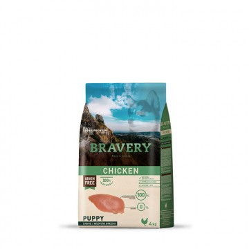 copy of Bravery Adult Small...